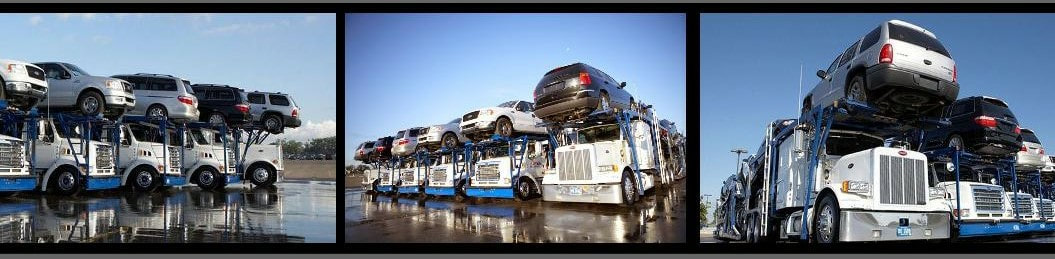 Free Auto Transport Quote
